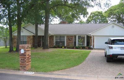 Flint Single Family Home For Sale: 18058 Briarcrest