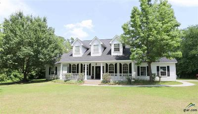 Tyler Single Family Home For Sale: 10229 County Road 290