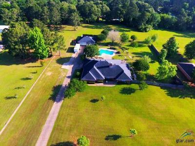 Whitehouse Single Family Home For Sale: 10879 Trenton Dr.