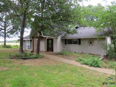 Wood County Single Family Home For Sale: 1164 Fm 2869