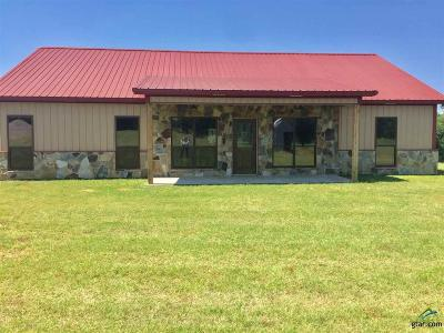 Troup TX Single Family Home For Sale: $325,000