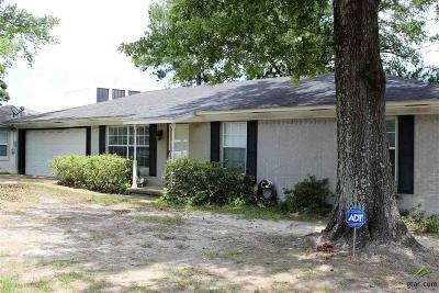 Tyler Single Family Home For Sale: 3038 Santa Elena Drive