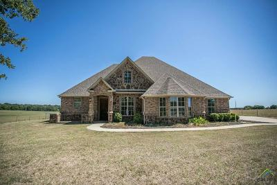 Tyler Single Family Home For Sale: 19165 County Road 419