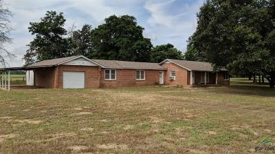 Tyler Single Family Home For Sale: 10843 Fm 724