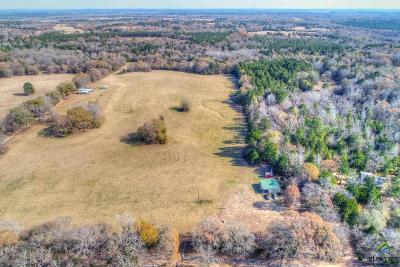 Acreage For Sale: 807 County Road 3808