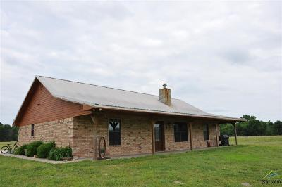 Wood County Single Family Home For Sale: 570 County Road 4186
