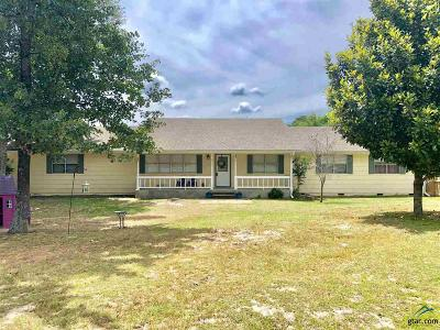 Single Family Home For Sale: 18470 County Road 2294