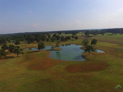 Acreage For Sale: 1414 Fm 346 N