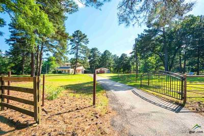 Lindale Single Family Home For Sale: 15377 County Road 434