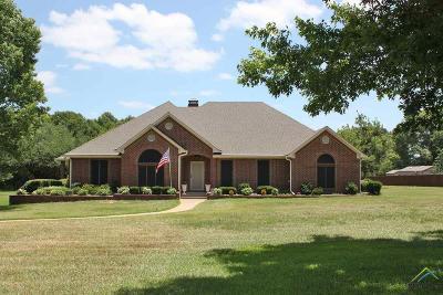 Flint Single Family Home For Sale: 19525 Norfolk Dr.