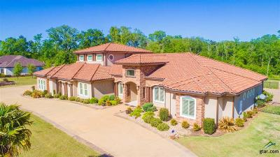 Longview Single Family Home For Sale: 10 Stone Ridge Trail
