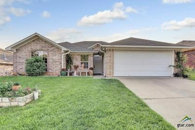 Tyler Single Family Home For Sale: 5733 Palo Pinto
