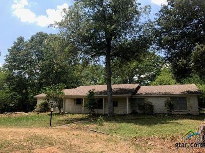 Tyler Single Family Home For Sale: 7015 Paluxy