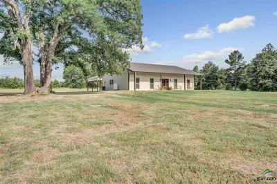 Grand Saline Single Family Home For Sale: 423 Vz County Road 1515