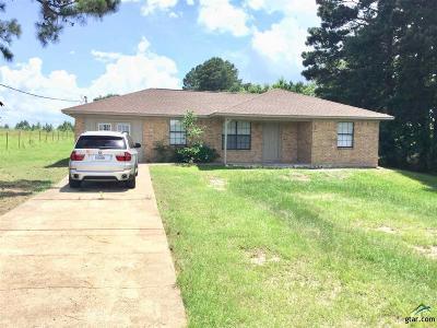 Tyler Single Family Home For Sale: 15270 Fm 2767
