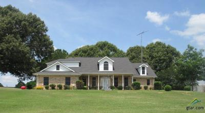 Frankston Single Family Home For Sale: 4709 An County Rd 312