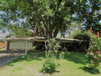 Tyler Single Family Home For Sale: 849 Airway Avenue