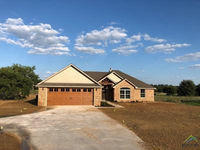 Lindale Single Family Home Contingent - Active: 14836 County Road 424 (Lot 5a)