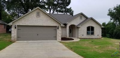 Tyler Single Family Home For Sale: 405 Sunnyhill