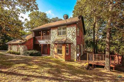 Flint Single Family Home For Sale: 17771 Regatta Place