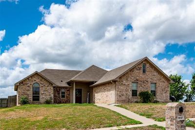 Flint Single Family Home For Sale: 19127 River Rock Drive