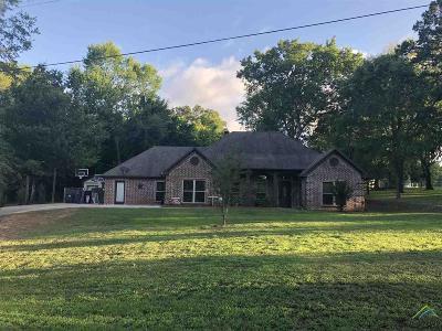 Tyler Single Family Home For Sale: 13984 Bent Trl