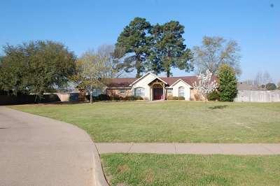 Flint Single Family Home For Sale: 11199 Hunter's Trail