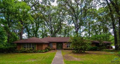 Tyler Single Family Home For Sale: 13350 County Road 468
