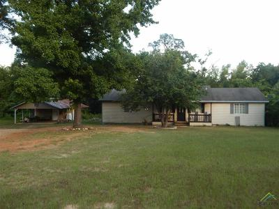 Tyler Single Family Home For Sale: 19201 Rocky Ln
