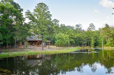 Flint Single Family Home For Sale: 15910 Haley Way