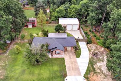 Tyler Single Family Home For Sale: 10683 Talihina