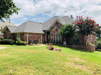 Single Family Home For Sale: 11186 Skyline Dr