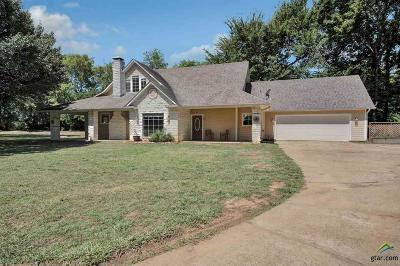 Single Family Home For Sale: 23600 County Road 181