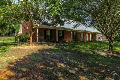 Whitehouse Single Family Home For Sale: 20959 Hickory