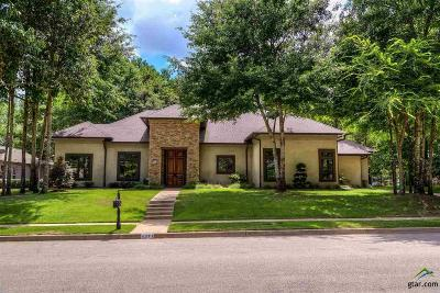 Tyler Single Family Home For Sale: 4371 Lazy Creek Drive