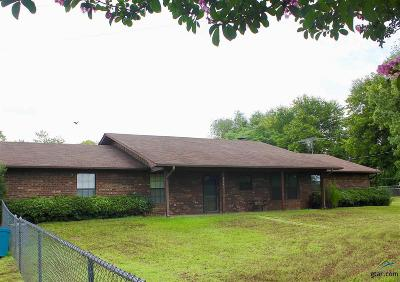 Gilmer Single Family Home For Sale: 4645 Us Hwy 271