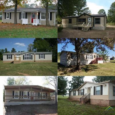 Bullard Commercial For Sale: 15506 Cedar Bay Dr