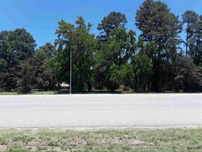 Tyler Commercial For Sale: 1187 Wsw Loop 323
