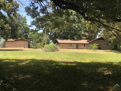 Upshur County Single Family Home For Sale: 11681 Wolverine Rd