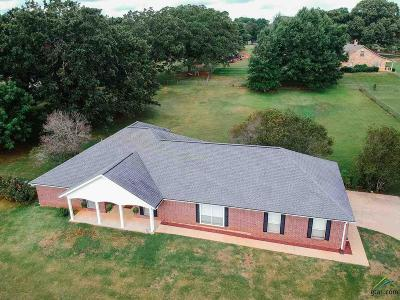 Whitehouse Single Family Home For Sale: 18676 Scott Drive