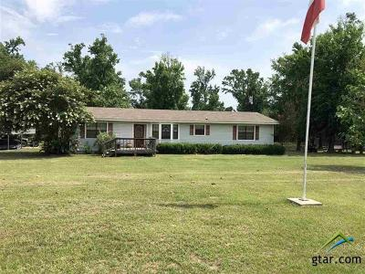 Upshur County Single Family Home For Sale: 4069 Turtle Road