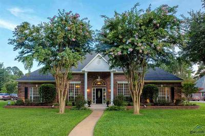 Tyler Single Family Home For Sale: 13609 White Tail Drive