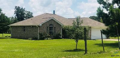 Tyler Single Family Home For Sale: 163 County Road 83