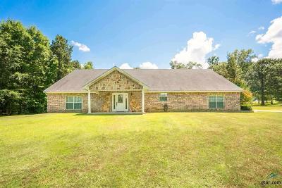 Longview Single Family Home For Sale: 246 Radar Rd.