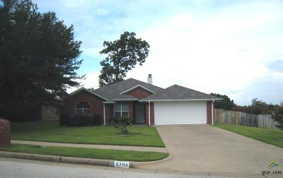 Tyler Single Family Home For Sale: 5704 Palo Pinto