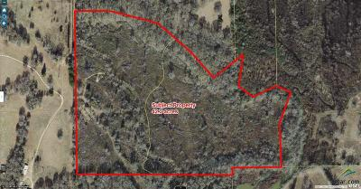 Acreage For Sale: County Road 2138