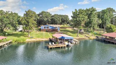 Frankston Single Family Home For Sale: 21879 Boles Rd