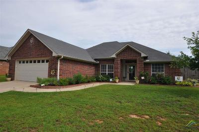 Tyler Single Family Home For Sale: 11844 County Road 167