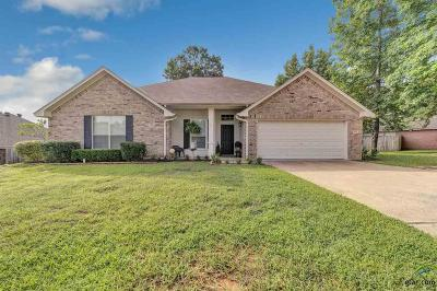 Tyler Single Family Home For Sale: 510 Skipping Stone