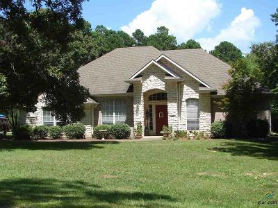 Big Sandy Single Family Home For Sale: 206 Lexington Drive